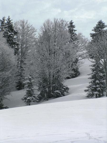 neige au Mourtis